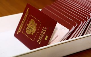 Что делать, если паспорт не проходит проверку на портале Госуслуг?
