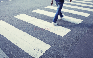 Как проверить штрафы пешеходов через интернет?